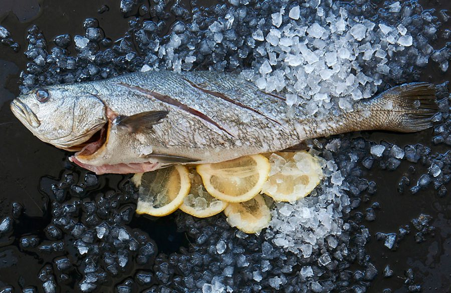 Discover the amazing benefits of fish and keep that healthy eating resolution in 2017