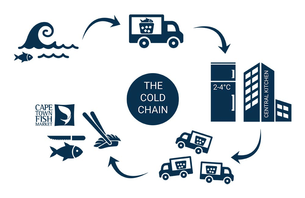 CTFM Cold hain infographic