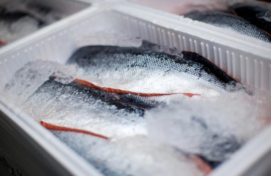 Here's how CTFM serves fresh fish from coast to coast – and everywhere in between