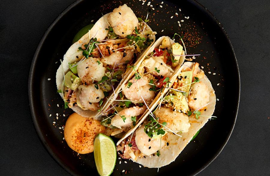 Fusion Cuisine - Prawn Tacos